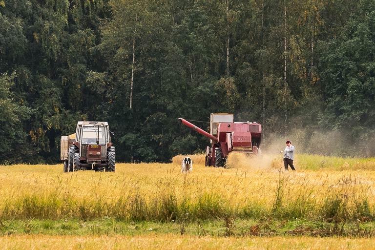 Representation av gårdsbruksenhet